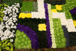 Toronto Flower Show Floral Carpet